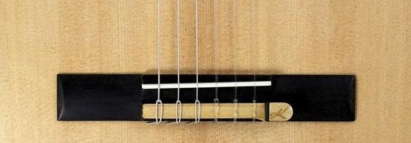 micro guitare cordes nylon