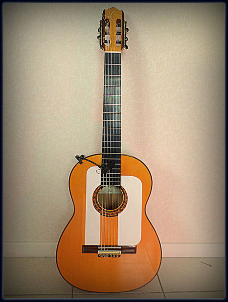 micro guitare flamenco