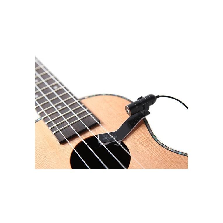 micro guitare flamenco