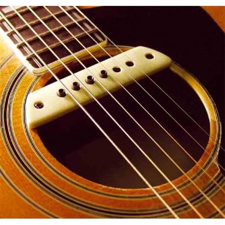 micro guitare folk rosace