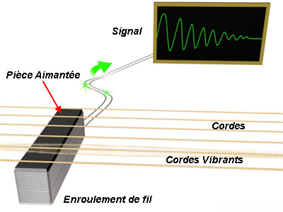 micro guitare vibre
